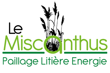 Le Miscanthus Paillage Litière Energie